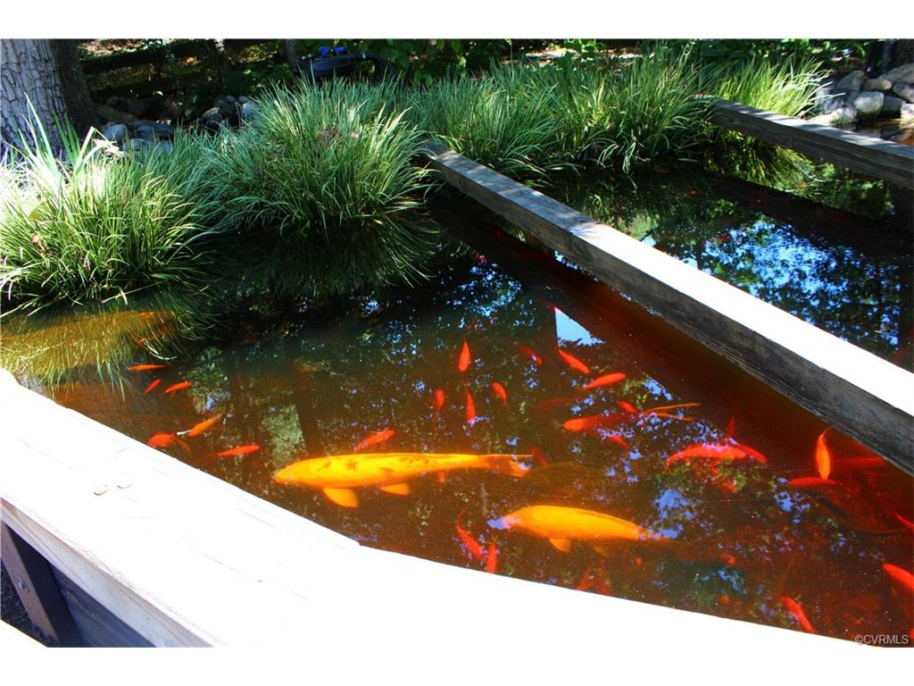 8800 overhill road henrico 23229 henrico joyner fine for Koi pool thornton